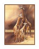 Family of Giraffes Art Print