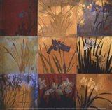 Iris Nine Patch II Art Print