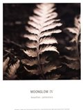 Moonglow IV Art Print