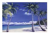 Secluded Cove Art Print