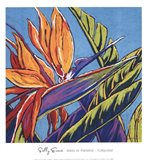 Birds of Paradise - Turquoise Art Print