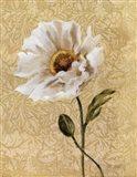Elegant Poppy Art Print