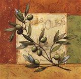 Olives du Midi I Art Print