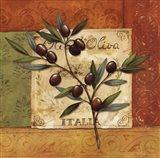 Olives du Midi II Art Print
