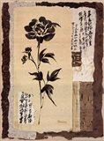 Zen Peonies Art Print