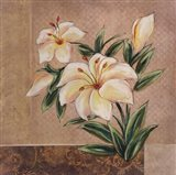 Spring Floral II Art Print