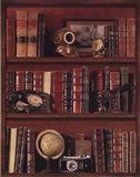 Librairie III - Mini Art Print