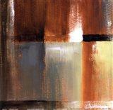 Sonoran Shadows IV Art Print
