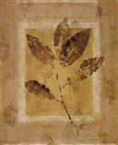 Golden Glow Leaf I Art Print