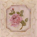 Rose In Season l Art Print