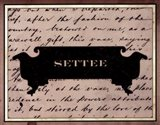 Settee Art Print