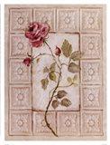 Rosa Antigua ll Art Print