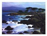Coastline At Pacific Grove Art Print