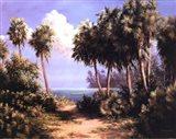 Untouched Coast Art Print