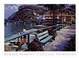 Catalina Promenade Art Print