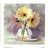 Lemon Sherbert Gerbera Art Print