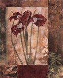 Jeweled Iris I Art Print