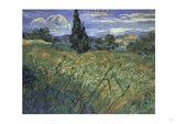 Green Wheat Fields Art Print