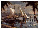 Tropical Sail Art Print