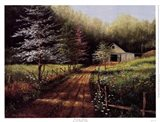 Country Spring Art Print