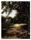 Pond House Art Print