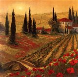 Poppies Of Toscano I Art Print