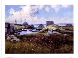 Houses Around The Bay Art Print