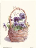 Grapevine Pansy Basket Art Print