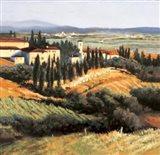 Distant Siena Art Print