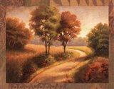 Afternoon Path Art Print