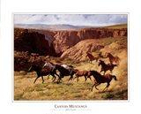 Canyon Mustangs Art Print