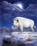 White Buffalo Art Print