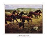 Mares Foals Art Print