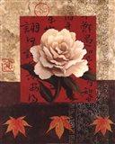 White Chinese Rose Art Print