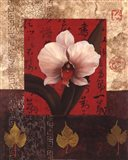White Chinese Orchid Art Print