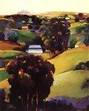 Eucalyptus Hills Art Print