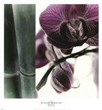Bamboo I (Flower I) Art Print
