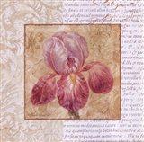 Le Jardin II Art Print