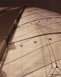 Windward Sail I Art Print