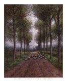 Shepherd's Lane Art Print