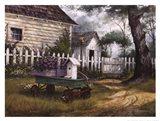 Antique Wagon Art Print