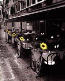 Sunflower Cafe Art Print