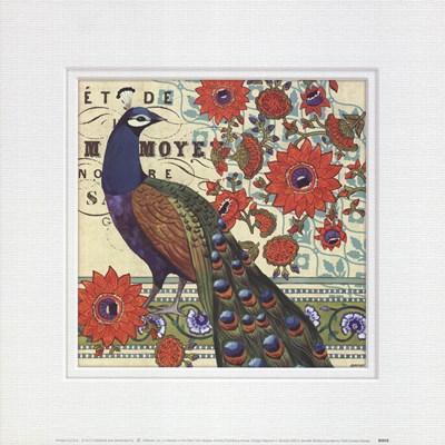 Vintage Peacock II Art Print by Brinley