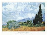 Yellow Wheat And Cypresses Art Print
