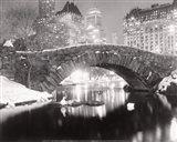 Snowfall In Central Park Art Print