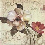 Fleurs De Paris 1 Art Print