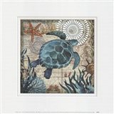 Monterey Bay Turtle Art Print