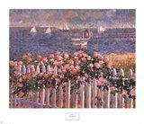 Hyannis Port Roses Art Print