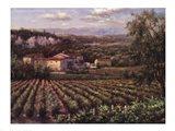 Vino Rosso Art Print