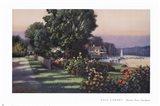 Harbor Roses Southport Art Print